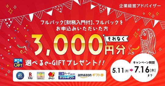 e-GIFT プレゼントキャンペーン