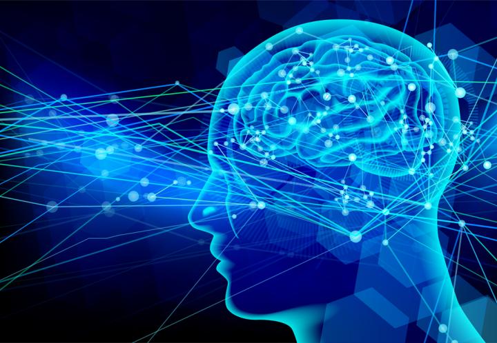 記憶のメカニズムから効果的な復習法を考える|TAC税理士ブログ|資格 ...